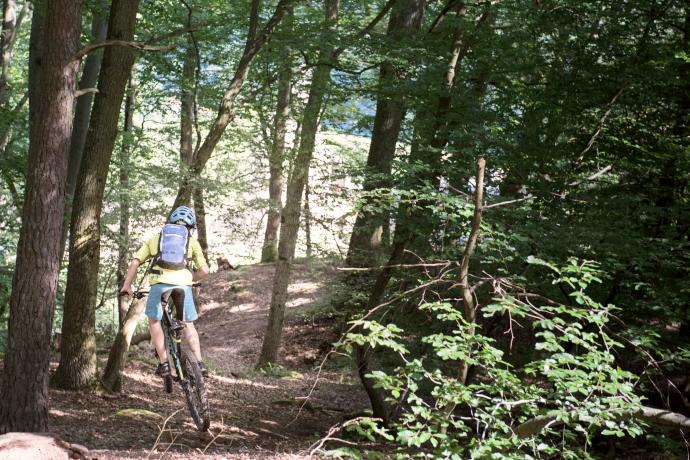 Mountainbike-Trails-Churfranken