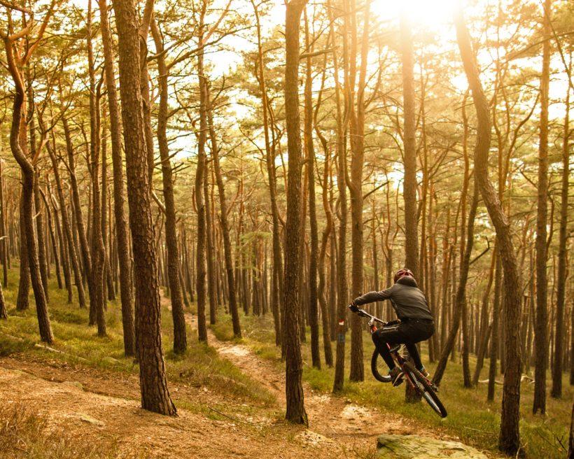 Mountainbiken in Churfranken: Freerides, Trails, Trainingsparcours & andere Besonderheiten