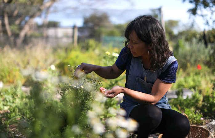 Manche umweltfreundlichen Unterkünfte bauen eigene Lebensmittel an – Lust auf frisch und lecker?